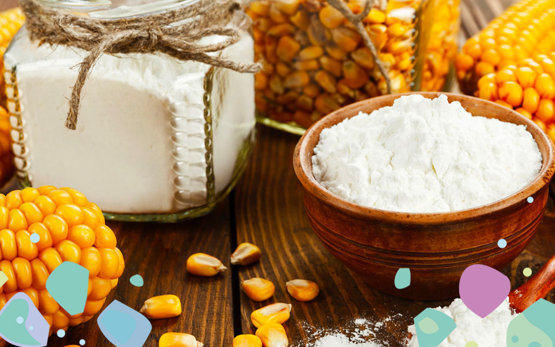 Corn on the cob and in individual kernels and white powder in bowls illustrating PLA - a plant-based alternative to plastic