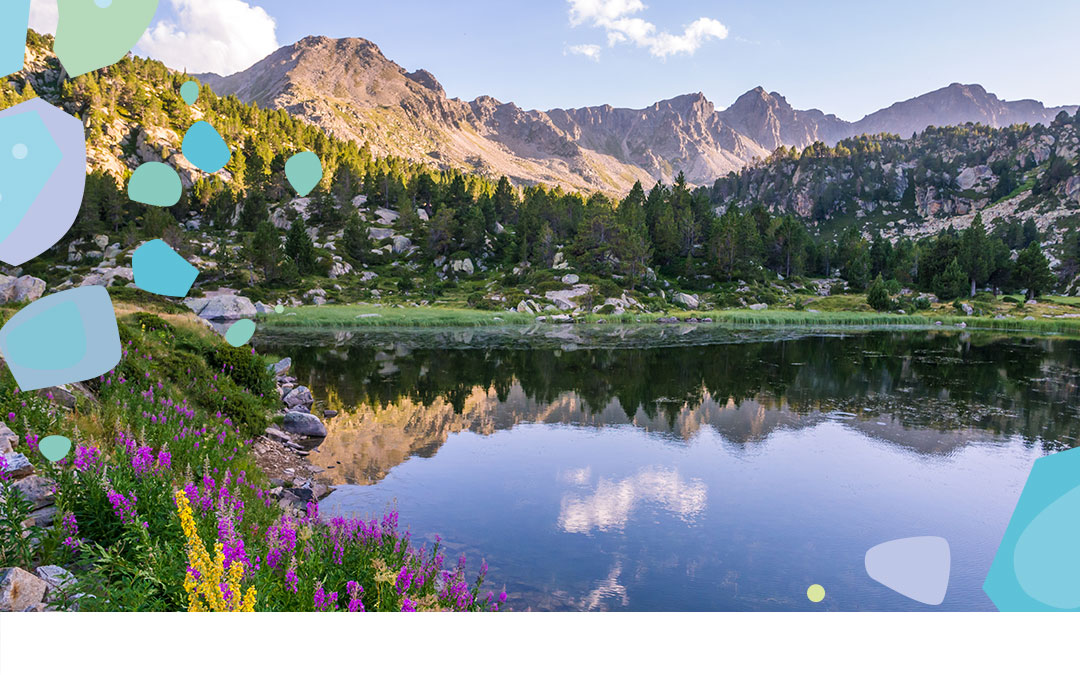 Pyrenees Mountains with forests, flowers, and a lake - showing the importance of going plastic free with Bonnie Bio UK