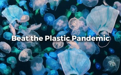 THE PLASTIC PANDEMIC: COVID-19 AND SUSTAINABLE PLASTIC POLLUTION SOLUTIONS